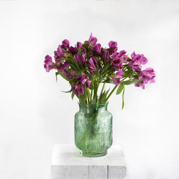 Ramo de flores Alstroemeria Fucsia