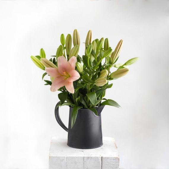 Ramo de flores Lilium rosa