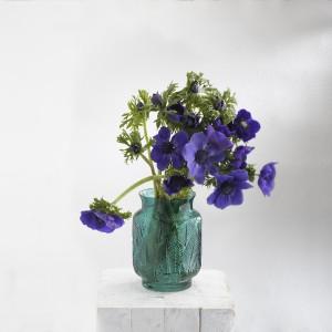 Anémona, la flor natural del viento
