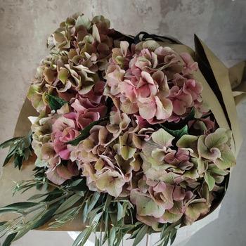 Nos rechiflan las hortensias de otoño, y a vosotros ??  #flormaniacs #flores🌸 #cocoandmiaflores #floresonline #floresadomicilio #ramosoriginales